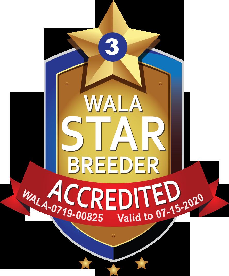 Browns WALA Star Logo-0719-00825.png
