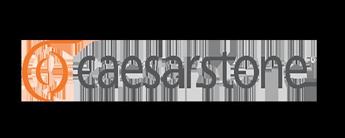 Caesarstone logo.png