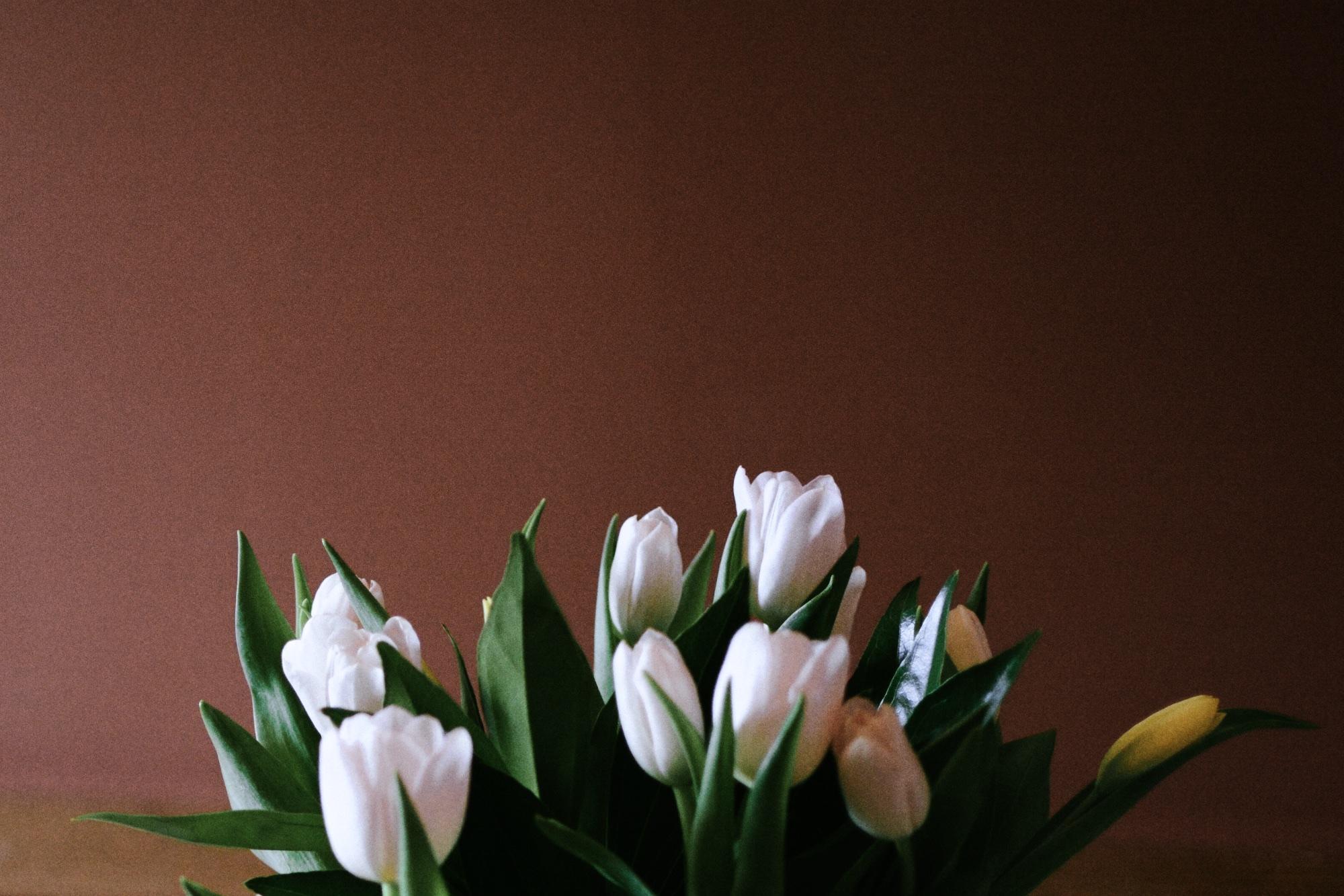 Easter-flower.jpg