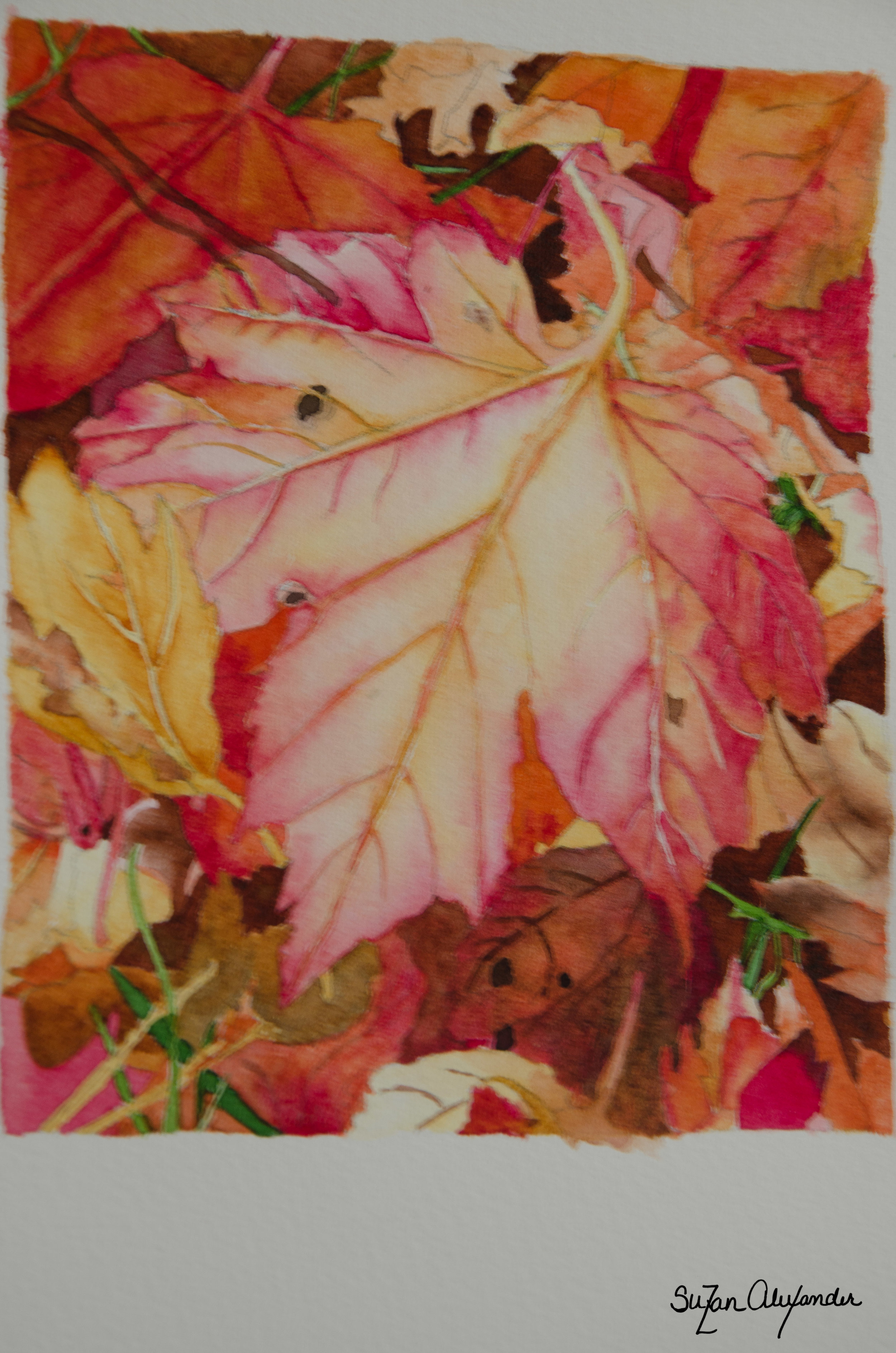 Watercolor Project 9: Autumn Leaves