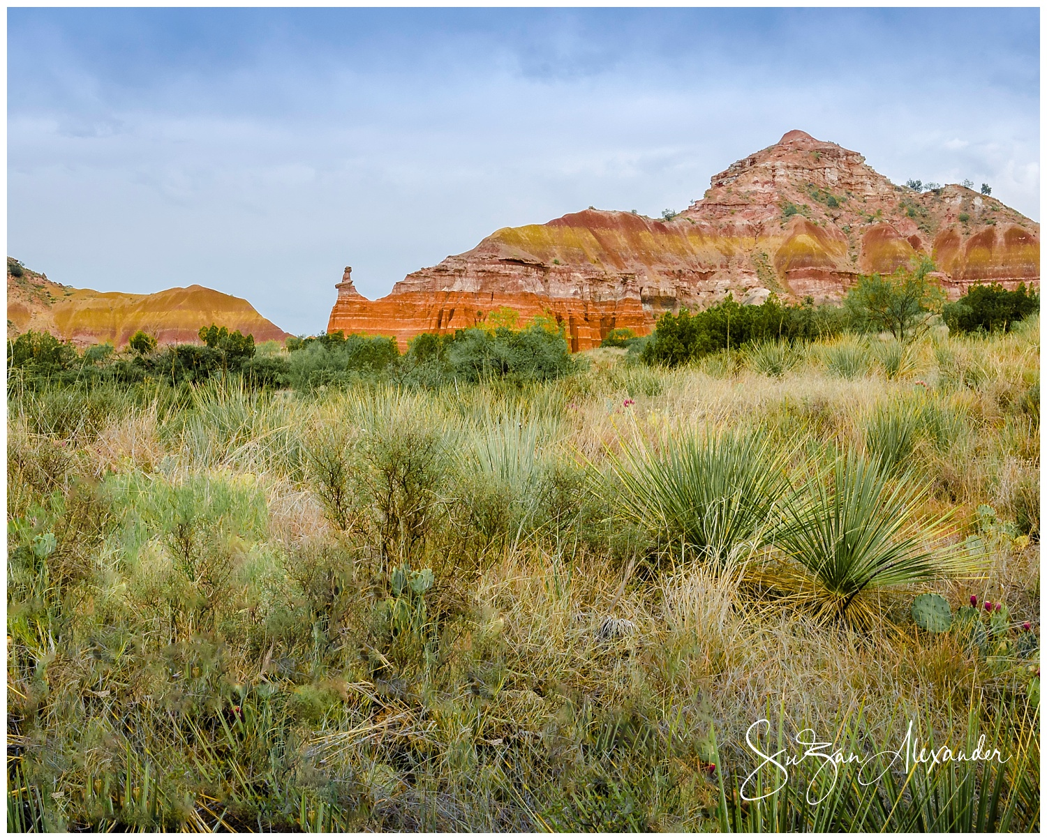 Palo Dura Canyon State Park Landscape with foreground element removed via the magic of  Adobe Photoshop