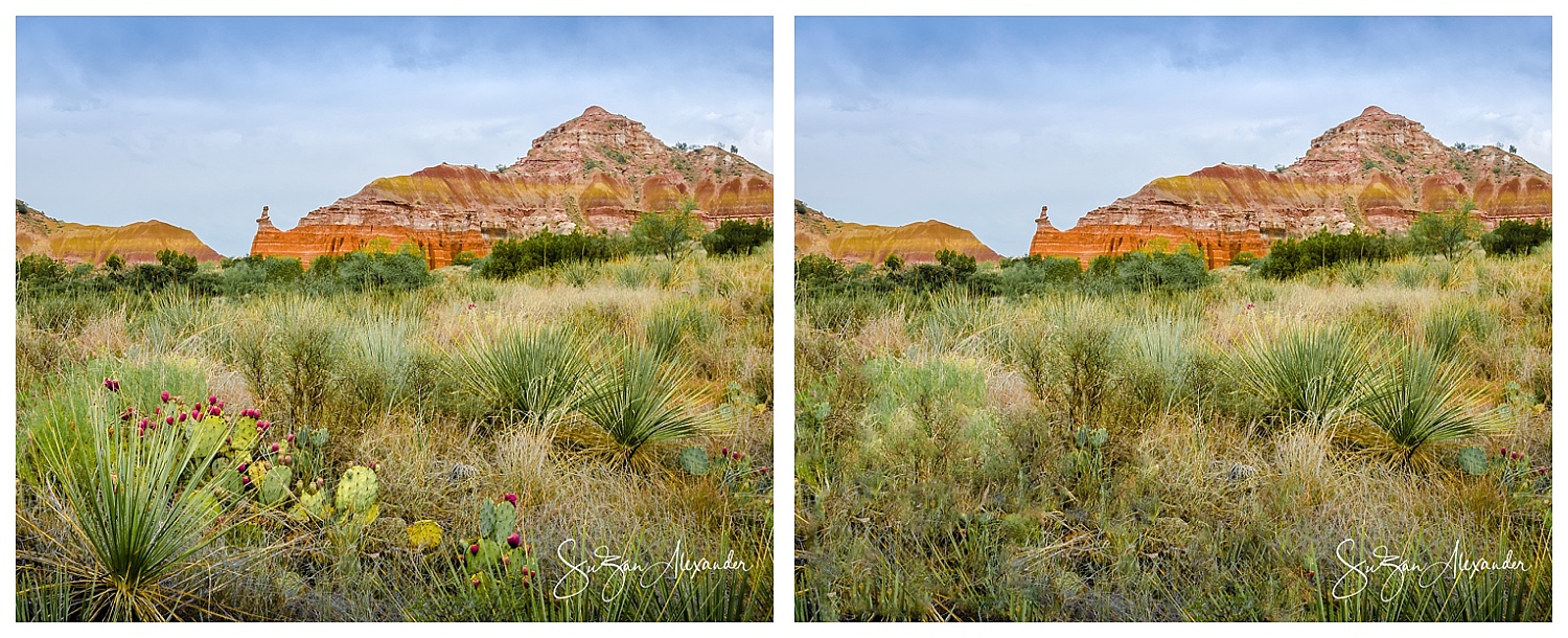 With Foreground Element VS Without Foreground Element