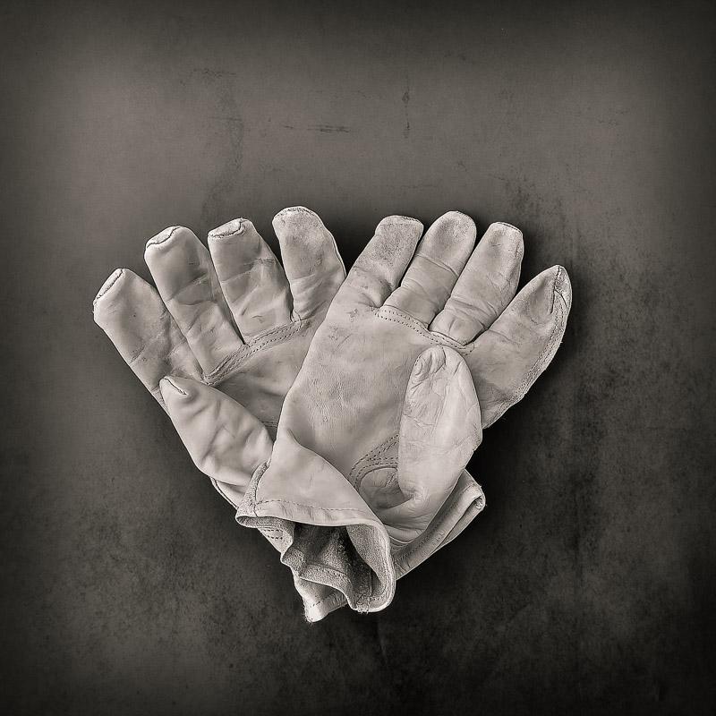 © 2019 SuZan Alexander   Working Hands  . Digital Photography