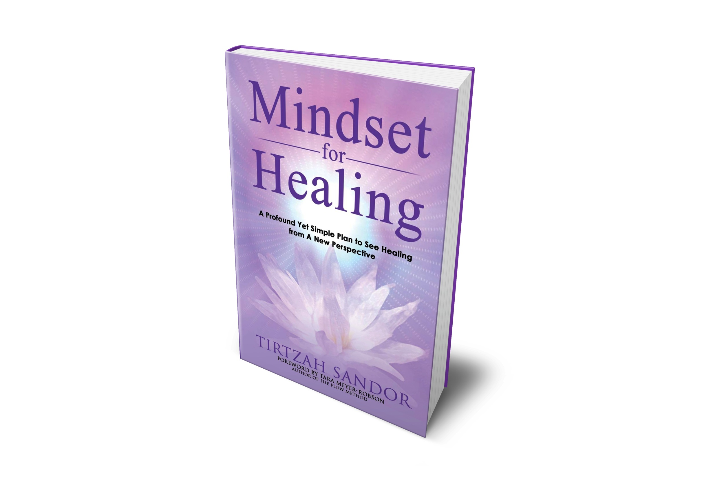 Mindset for Healing - A Profound Yet Simple Plan to See Healing from A New Perspective(Click on the book to order a paperback copy or e-book through Amazon.com. or contact me to purchase a paperback copy.)