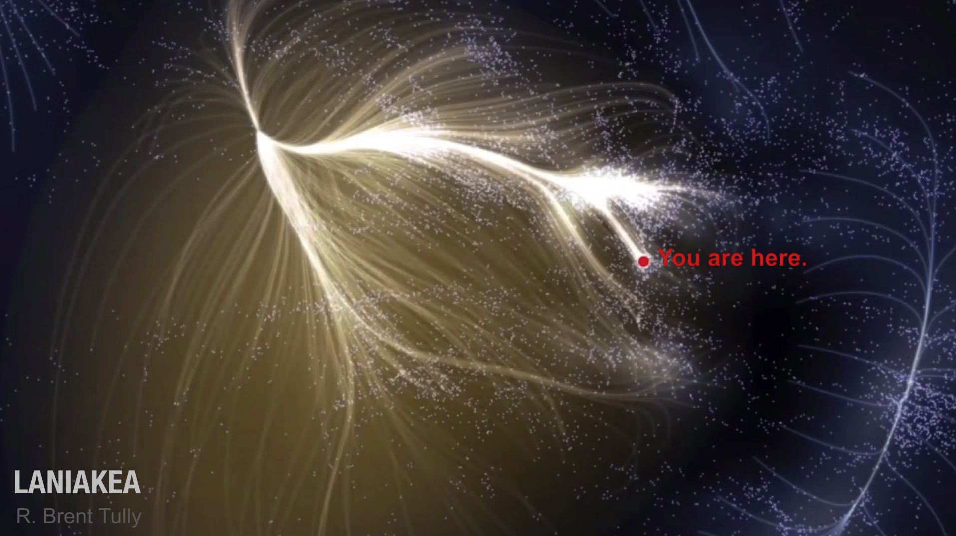 "This image shows about 100,000 galaxies in our local supercluster. The glowing lines show trajectories of galaxies over the next billions of years due to the Laniakea gravitational structure. Laniakea is an Hawaiian word meaning ""immeasurable heaven""."