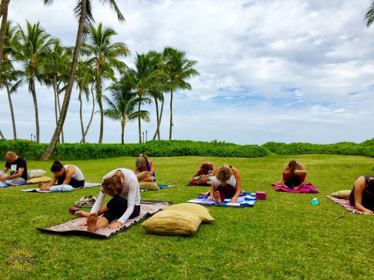 teacher training hawaii yoga.jpg