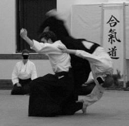 aikido 1.jpg