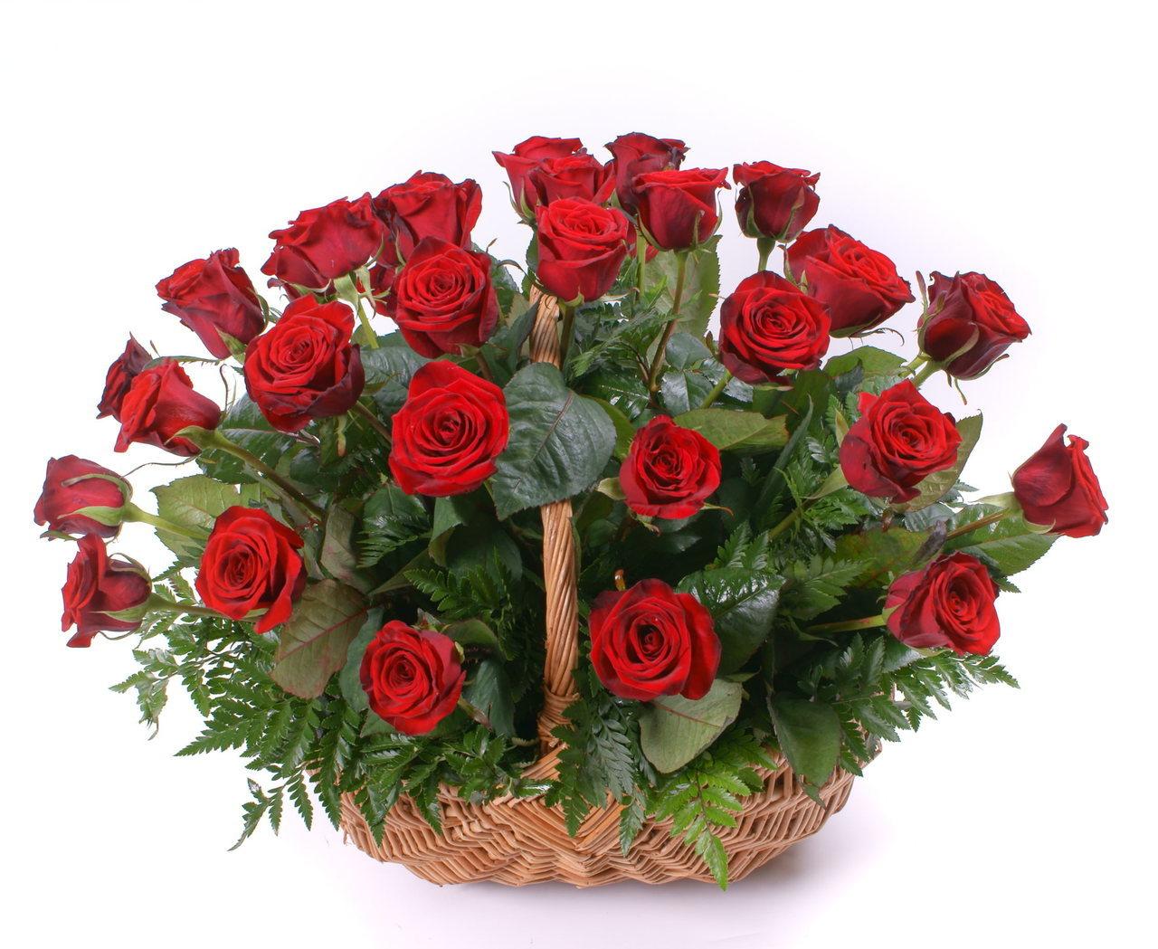 basket_red_color__36044__38658.1399485354.jpg