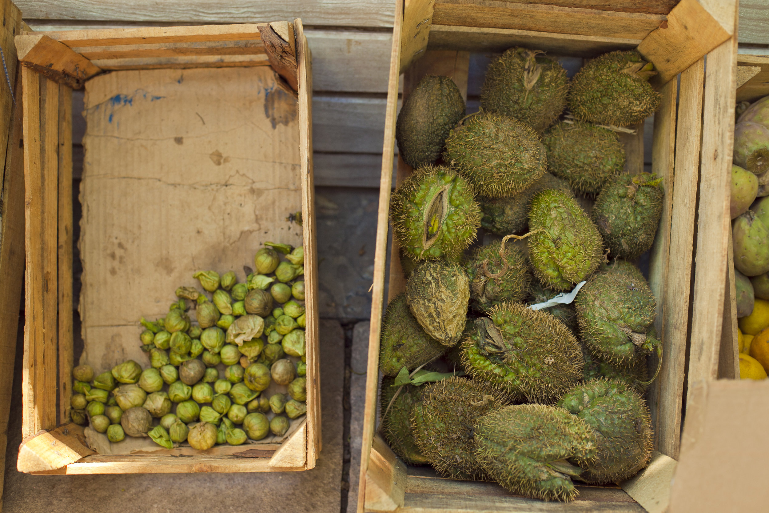 Copy of boxes of tomatillo and chayote