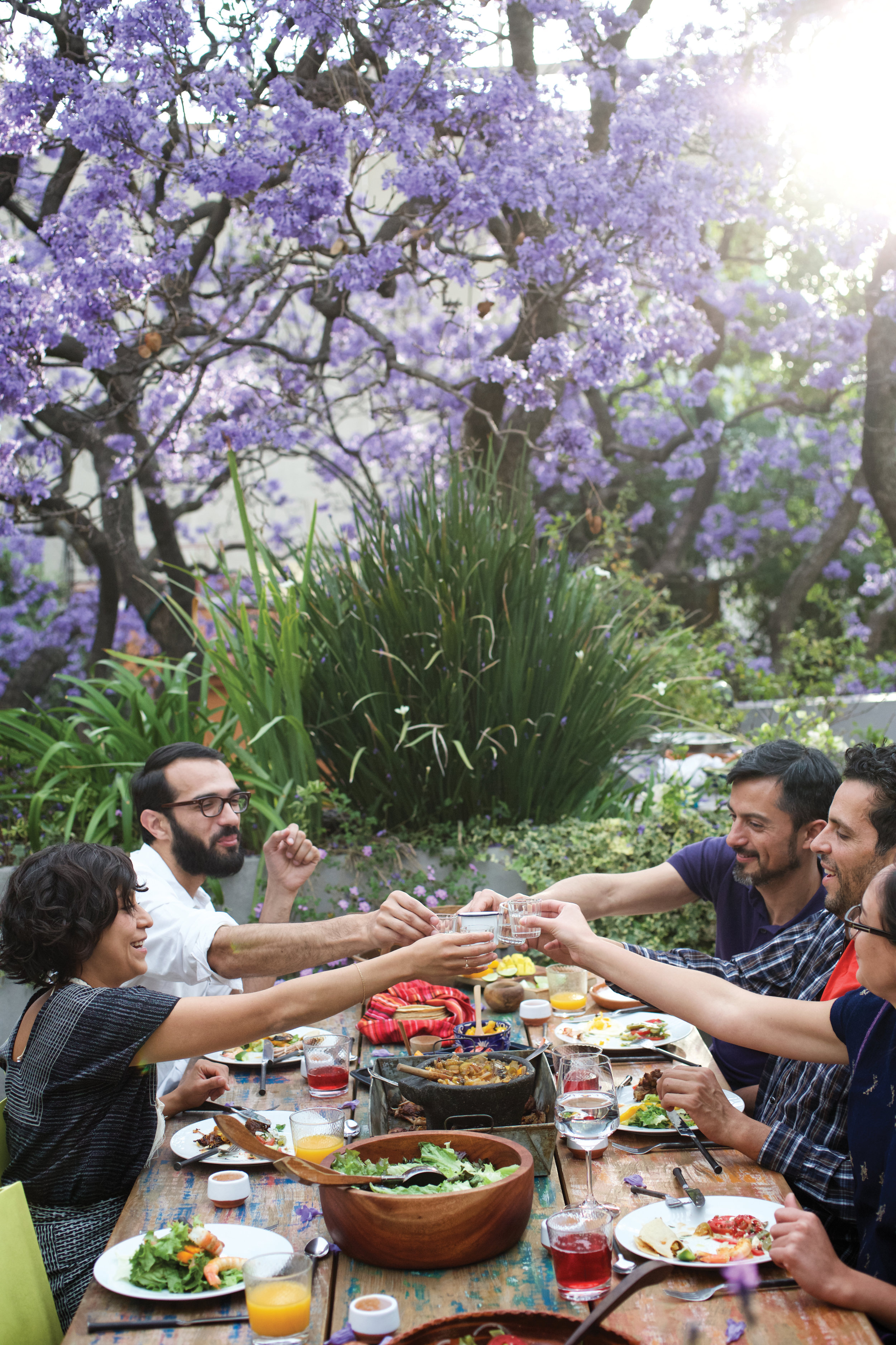 Copy of group saying cheers at a lunch under a jacaranda tree