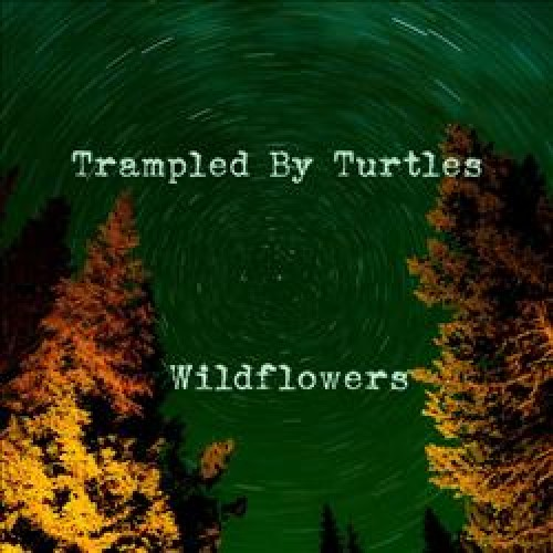 8. Trampled by Turtles: