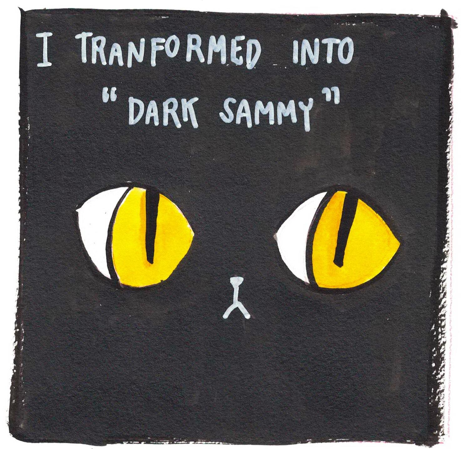 Sammy 8.jpg