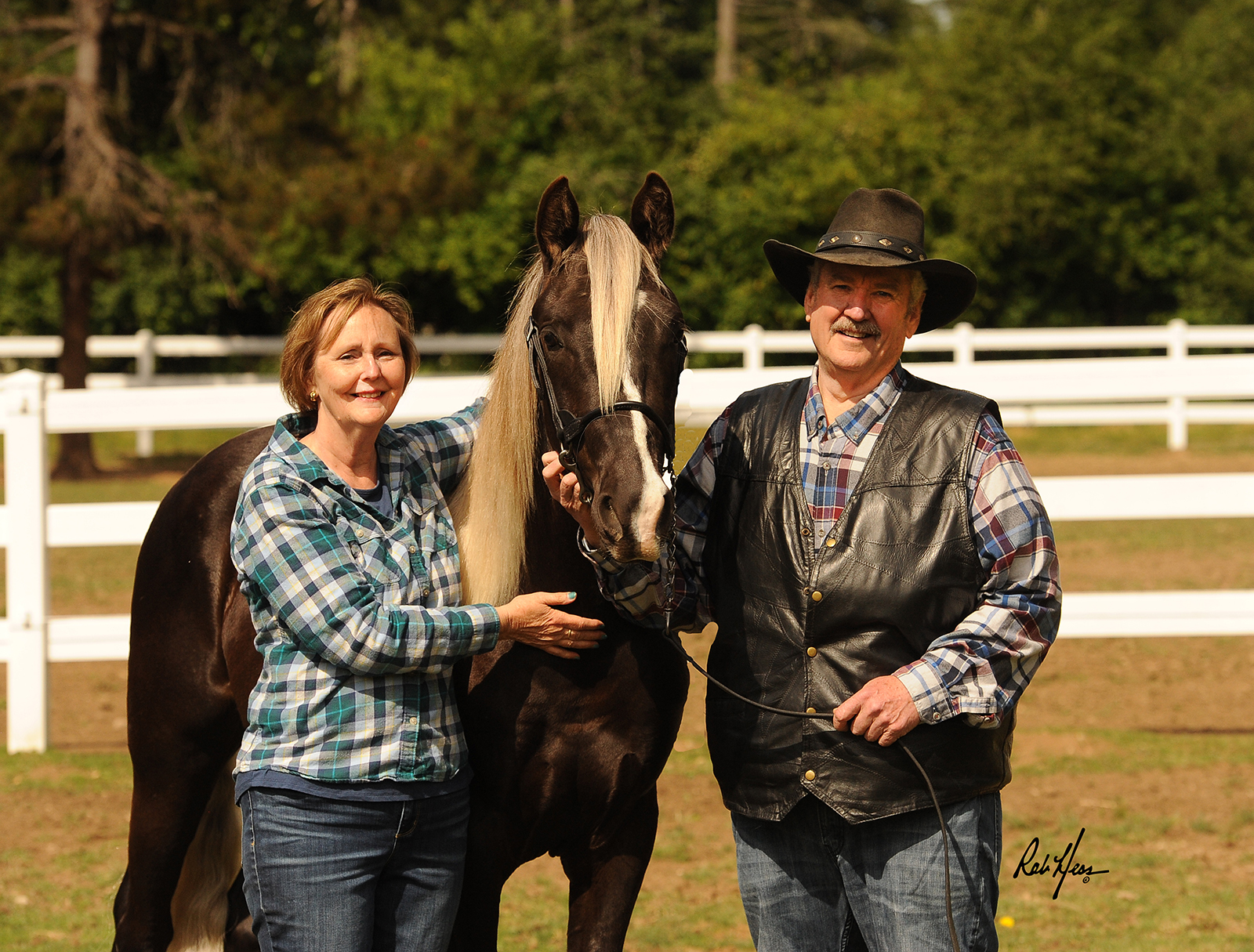 Tim and Cathy Abbey with Rocky Mountain Horse Maximus