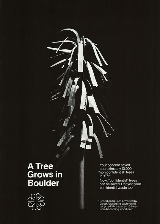 A Tree Grows in Boulder, 1972