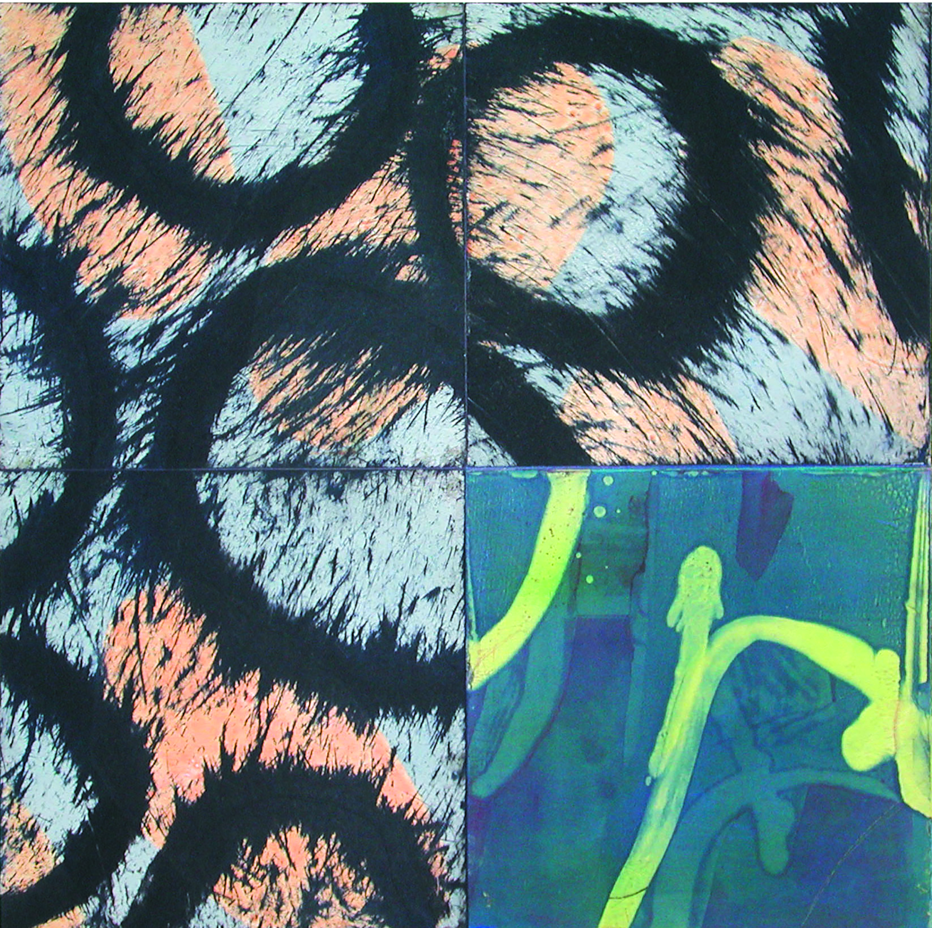 ACANTHUS QUATTRO XXIX 2003 Monoprint Image size 24 x 24 inches Paper size 32 x 32 inches