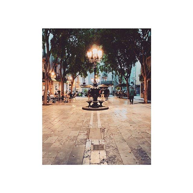 barca you beauty . . . . . #barcelona #catalonia #spain #urban #streetscene #trees #europe #travel #travelpic #placesandprose #iphoneography #urbanvibes #elborn #dusk #streetlamp