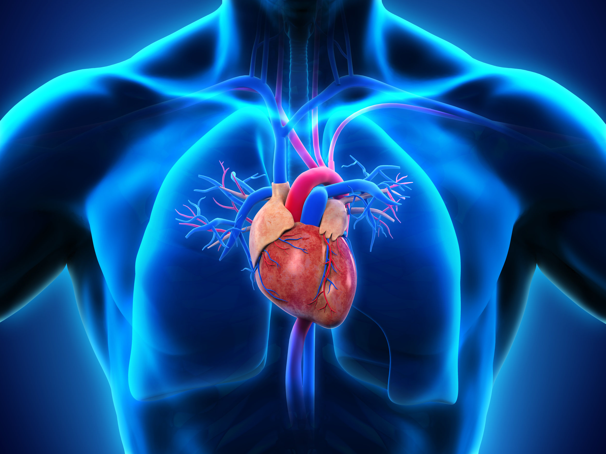 Heart & Lung Health