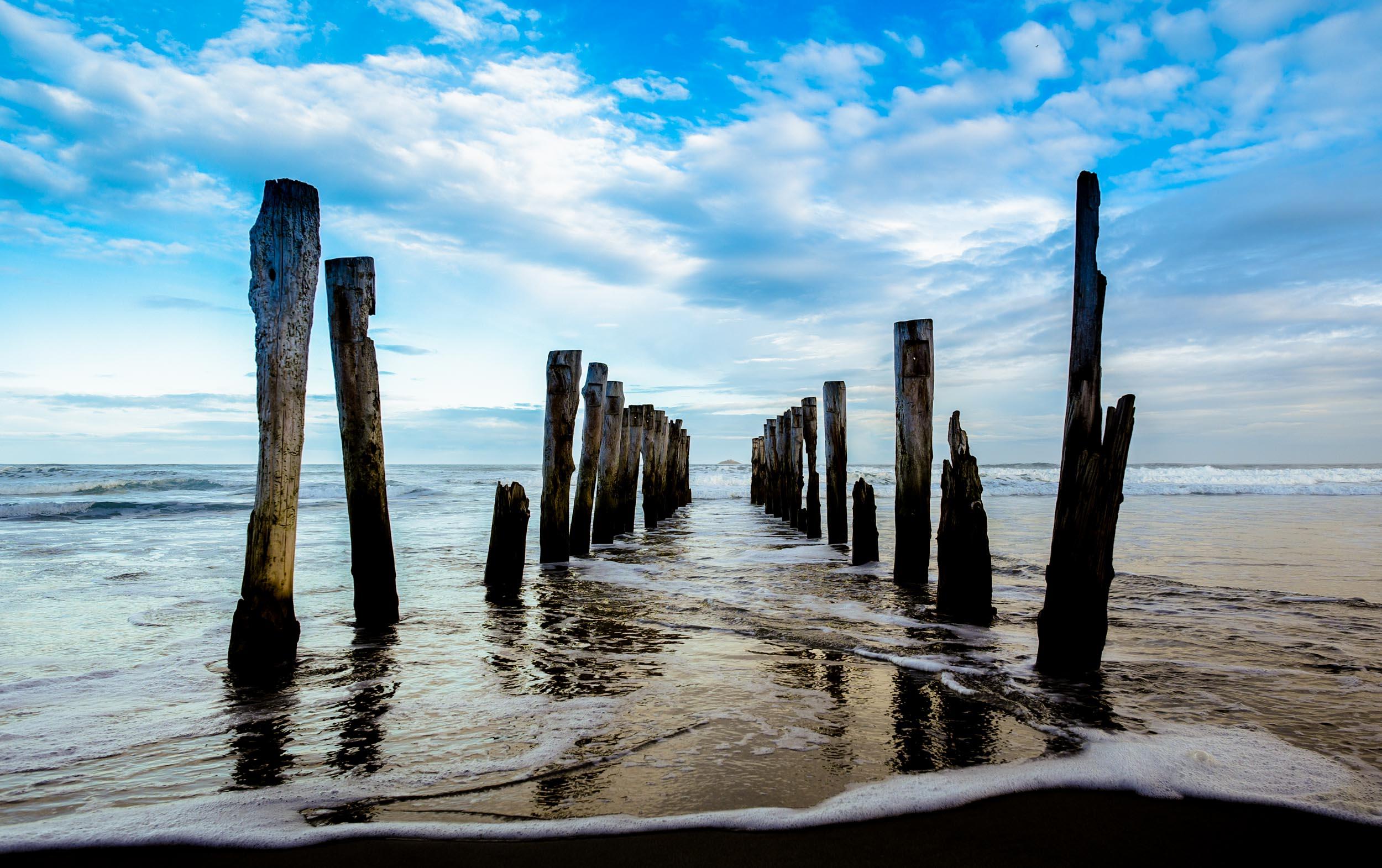 St Clair Beach Poles, Dunedin 5