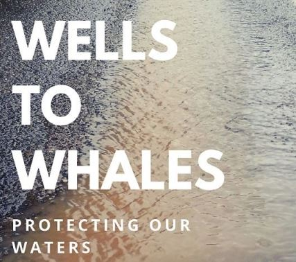 Wells to Whales Photo.JPG