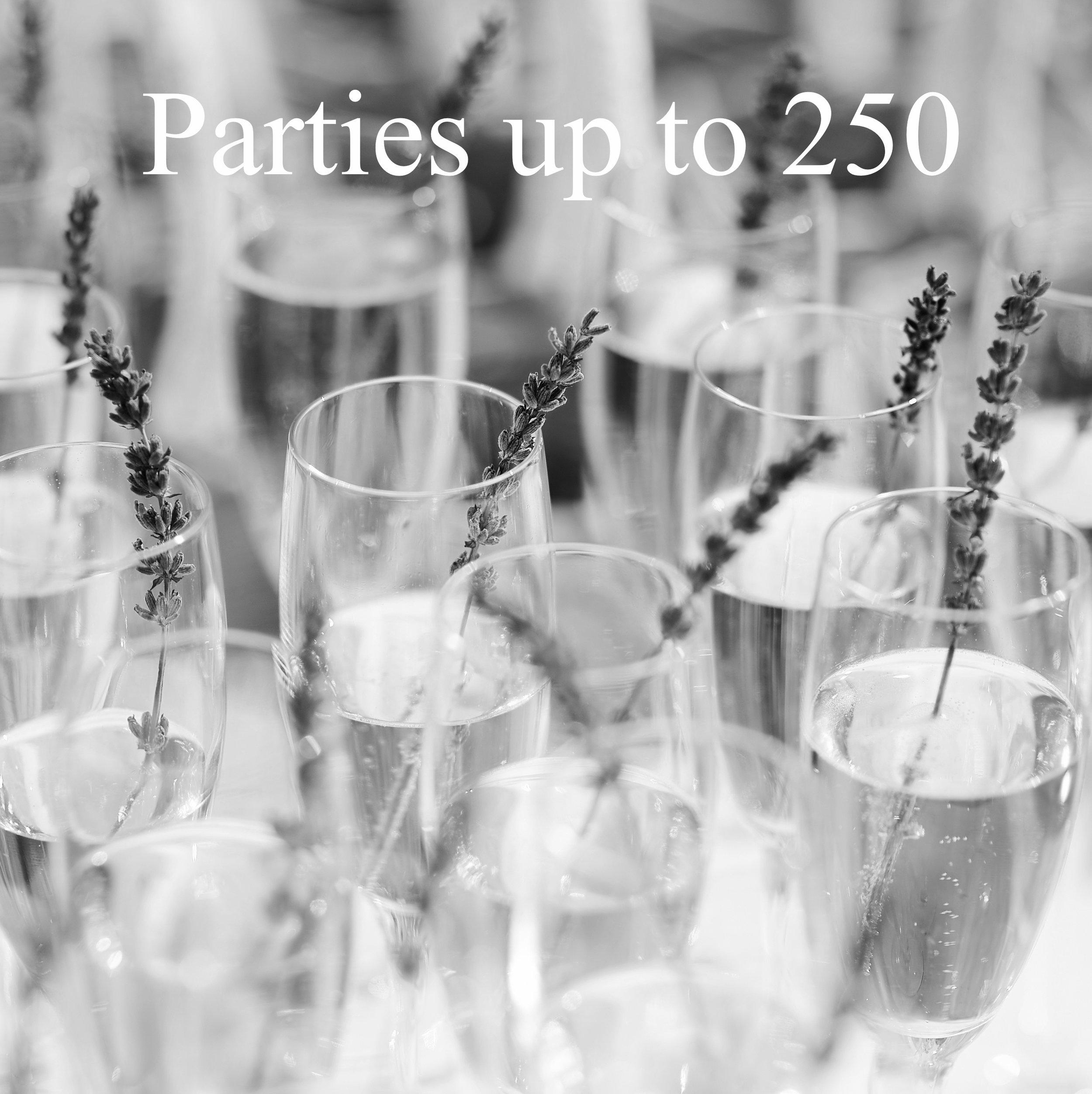 Parties 250.jpg