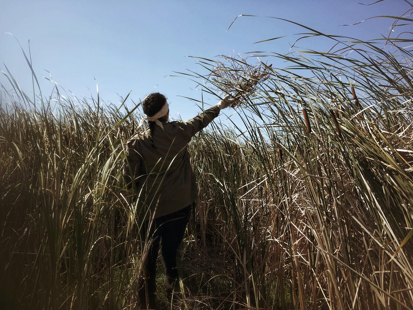 Casting Aside the Tumbleweeds