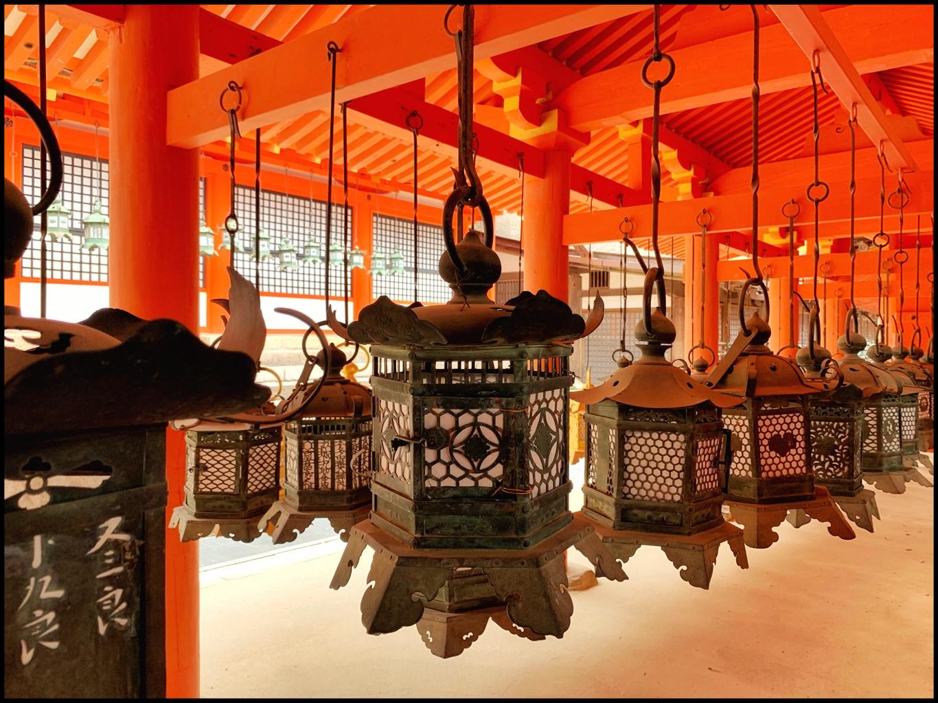 Many Lanterns Light the Way by Becky Jaffe.JPG