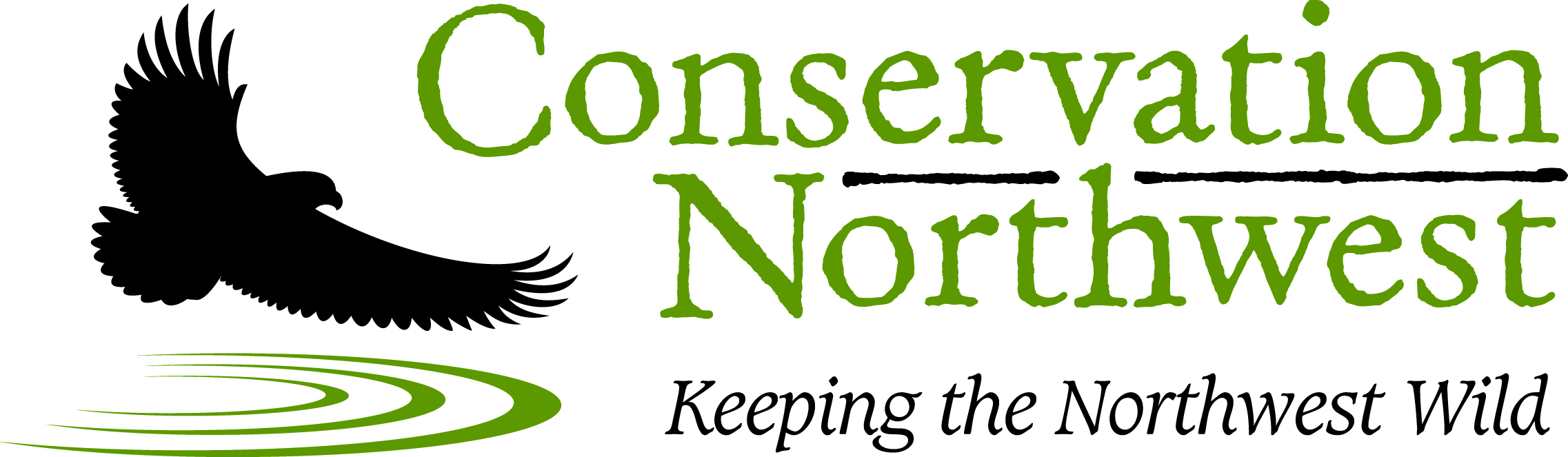 CNW_Logo_standard_high-res.jpg