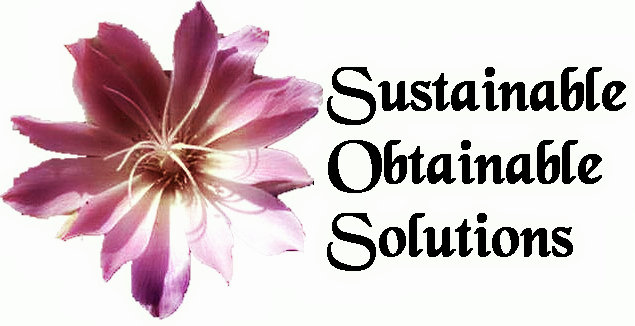 SOS Logo2.jpg