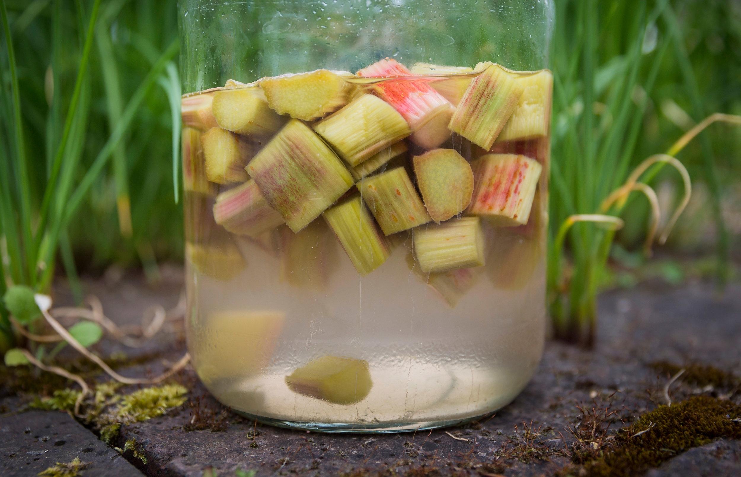 Rhubarb Gin.jpg