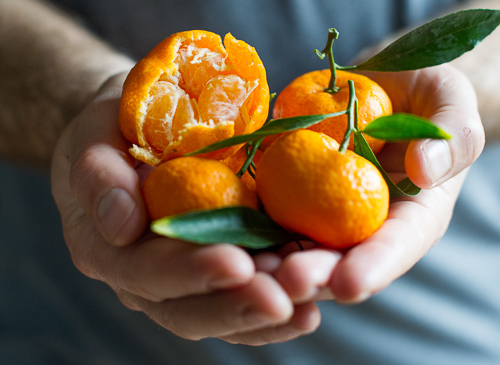 Afourer, Satsuma and Encore all come under the umbrella of Mandarins. These 3 crops allow us to continually supply mandarins to the market almost year round.Mandarins are irresistibly sweet, fragrant and flavourful. -