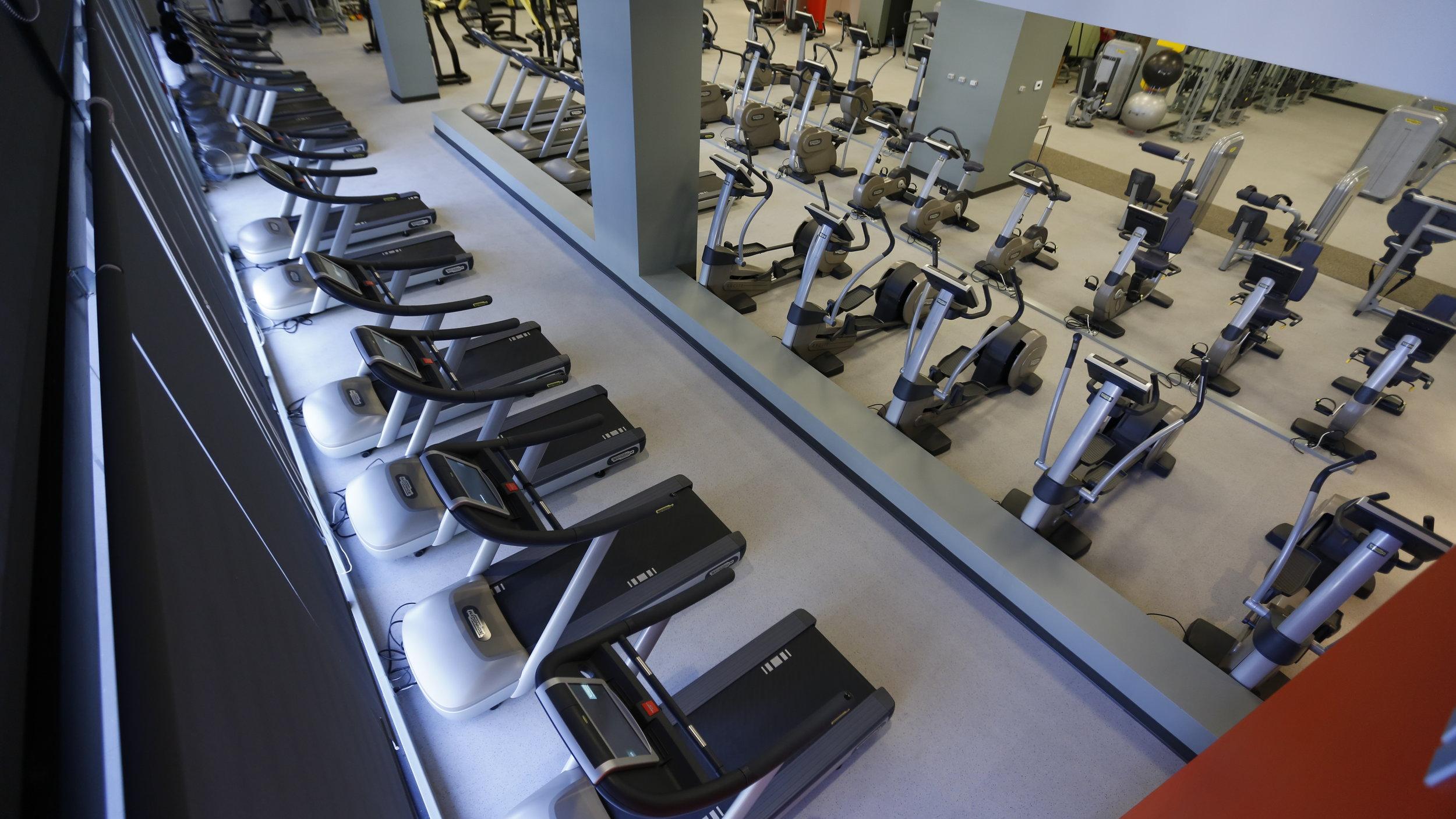A full floor of cardio equipment