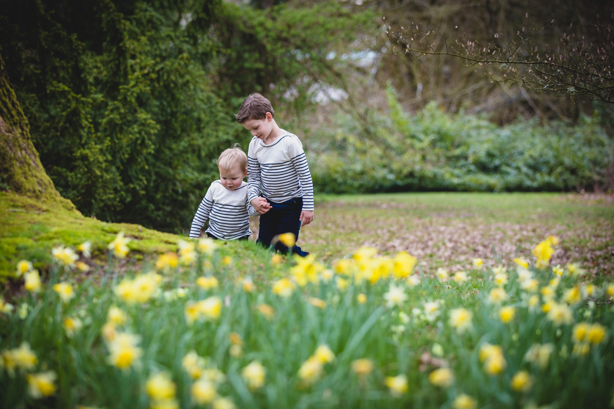 Early spring family photography session in the daffodils