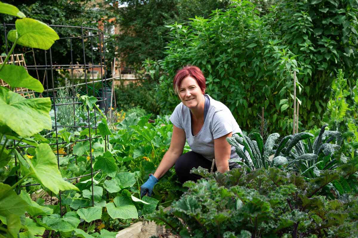 Tending to my allotment, a hidden gem in South London