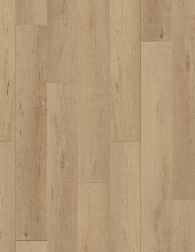 3. Calypso Oak