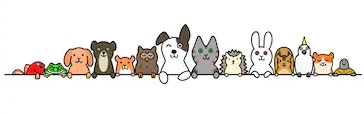 pet-animals-row-copy-space-260nw-257956568.jpg