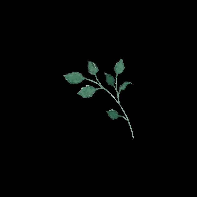 Floral2.png