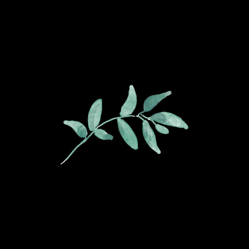 Floral5.png