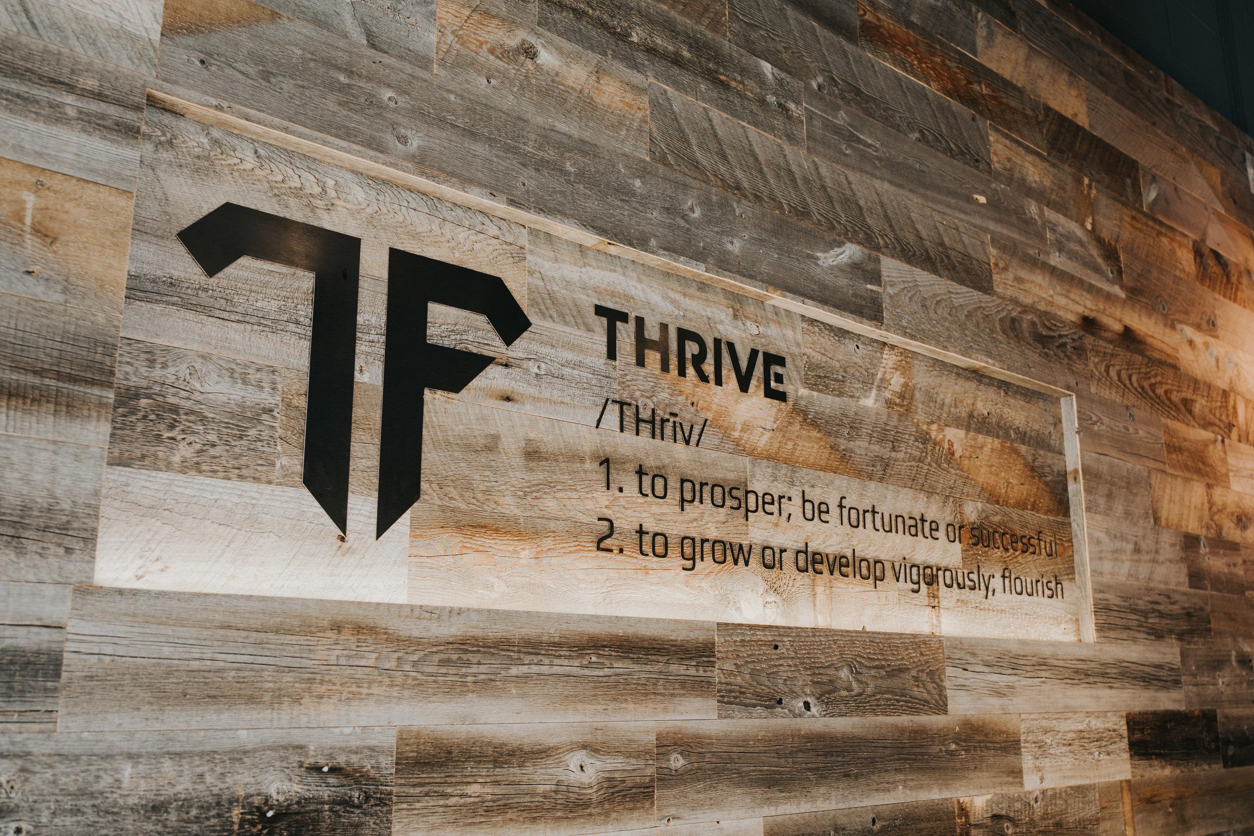 Thrive Definition.jpg