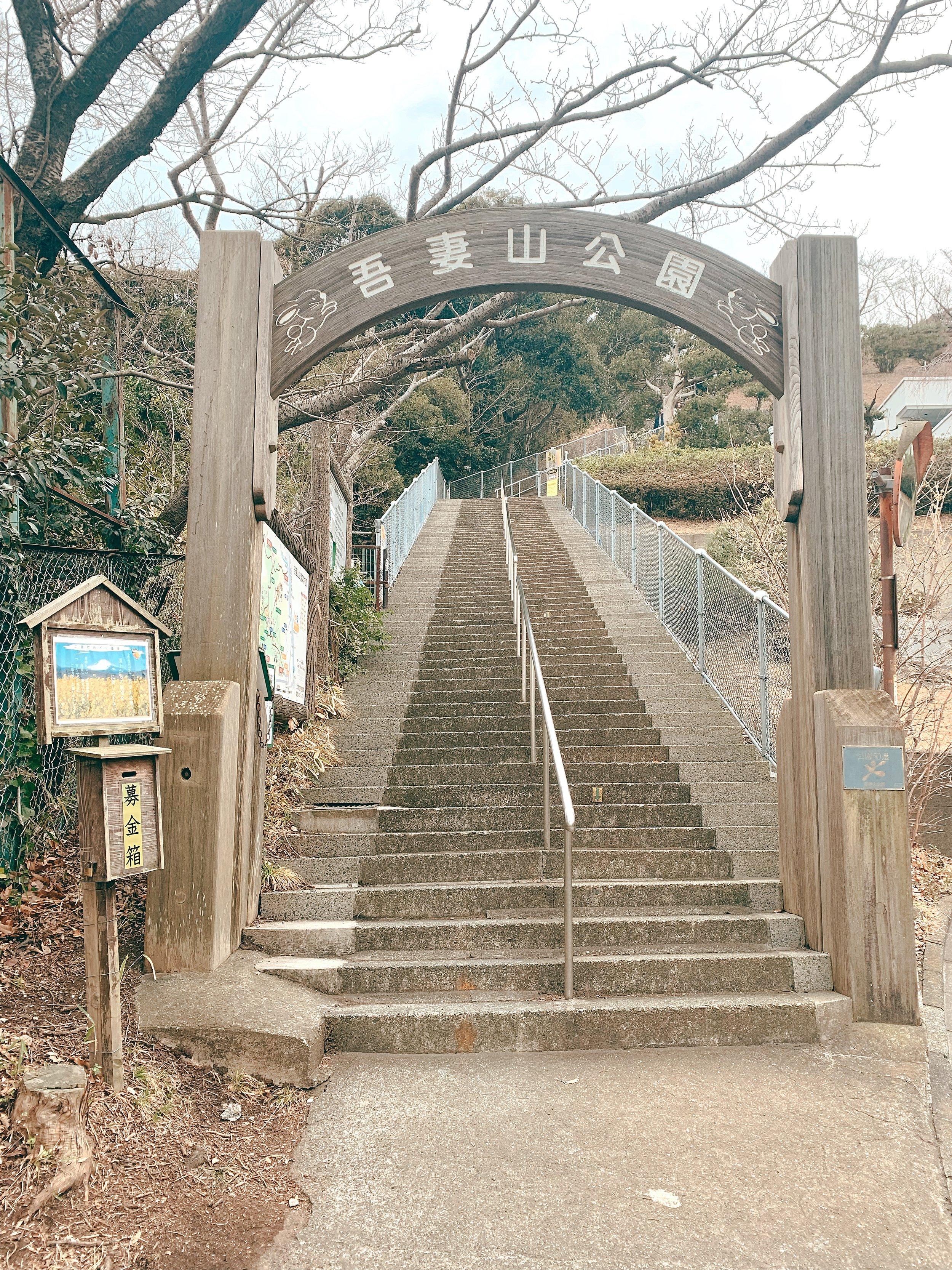 山 公園 吾妻