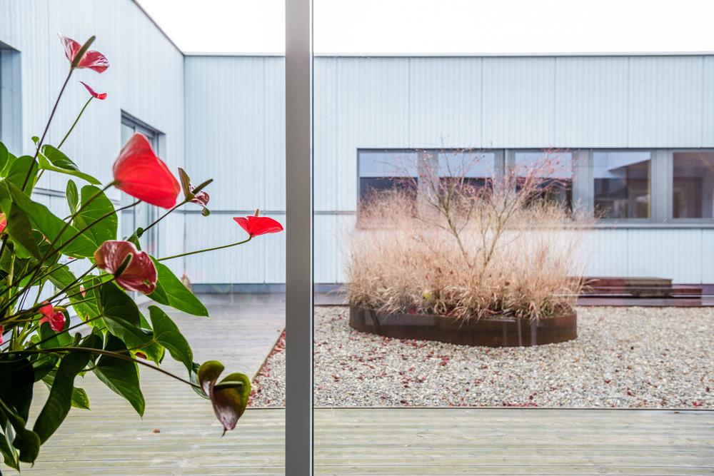 Neubau-Fenstermanufaktur-Holzelementbau-goldach-vogel-innenhof.jpg