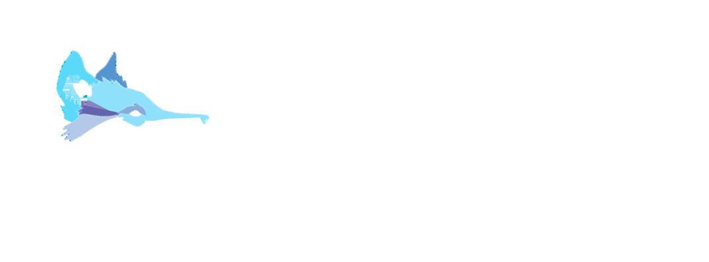 dancewize-logo.png
