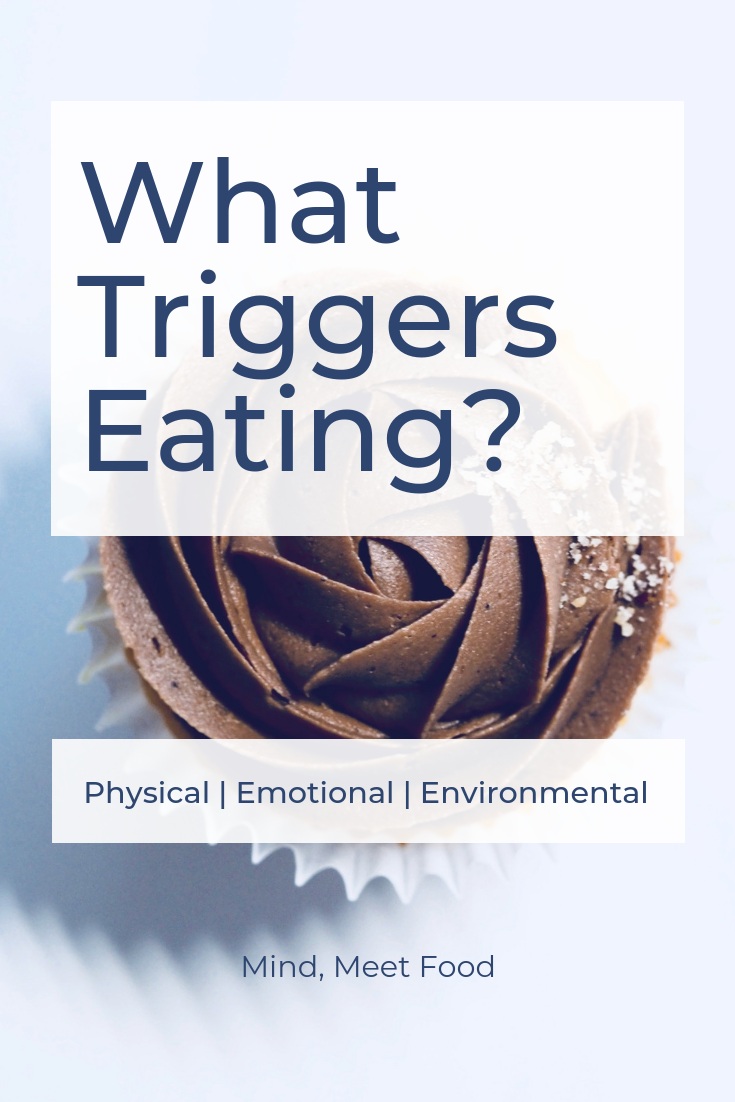 What triggers eating? Physical, emotional and environmental things can drive us to the fridge!