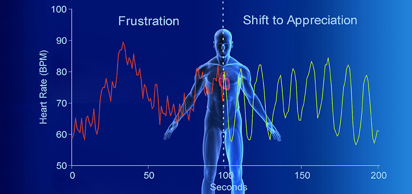 Shifting to a state of coherence and appreciation activates the parasympathetic response, raises HRV and over time helps you become more adaptable in the face of threat, challenge or stress.
