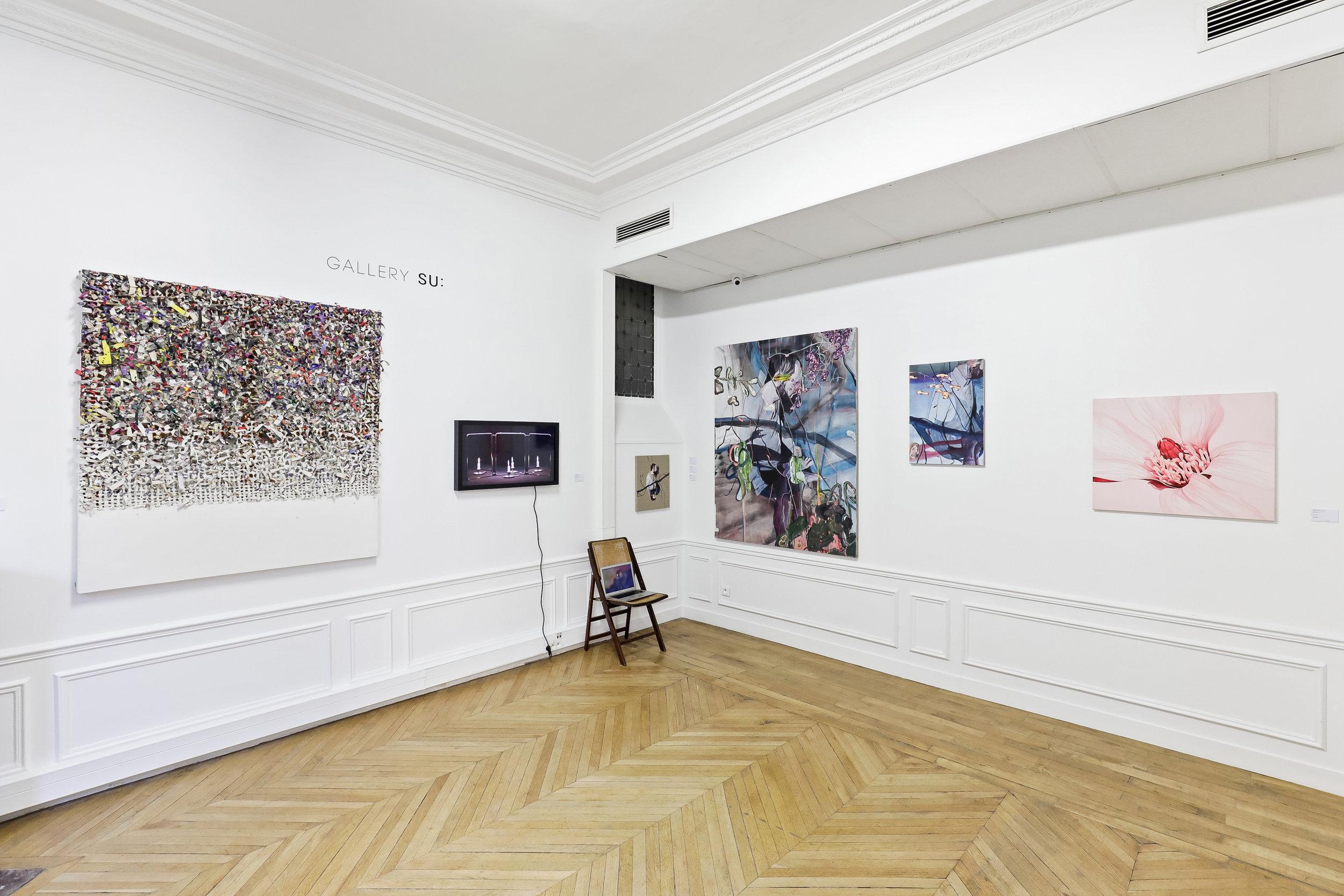Gallery SU: