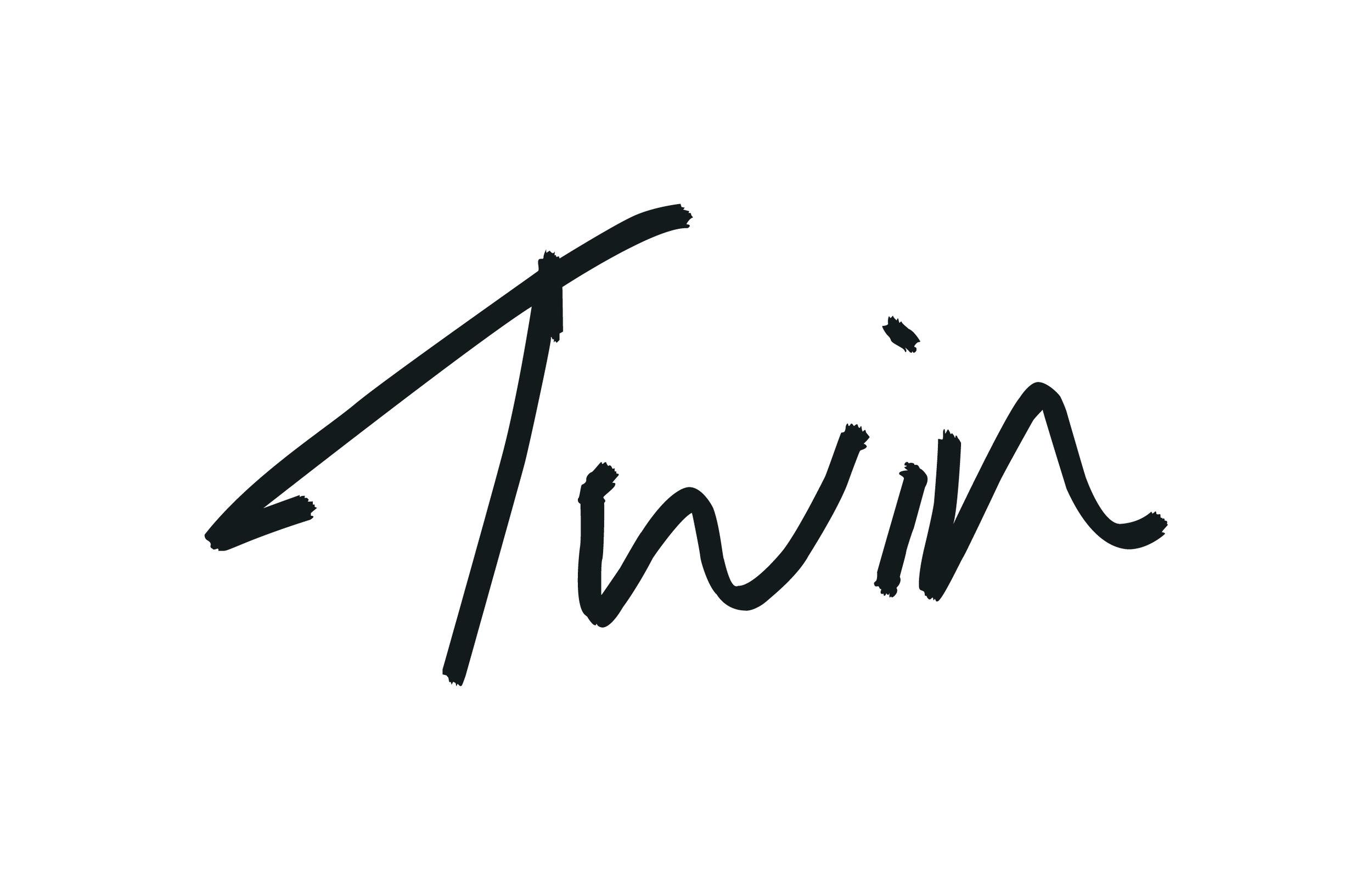 plan_a_partner_twin_logo.jpg
