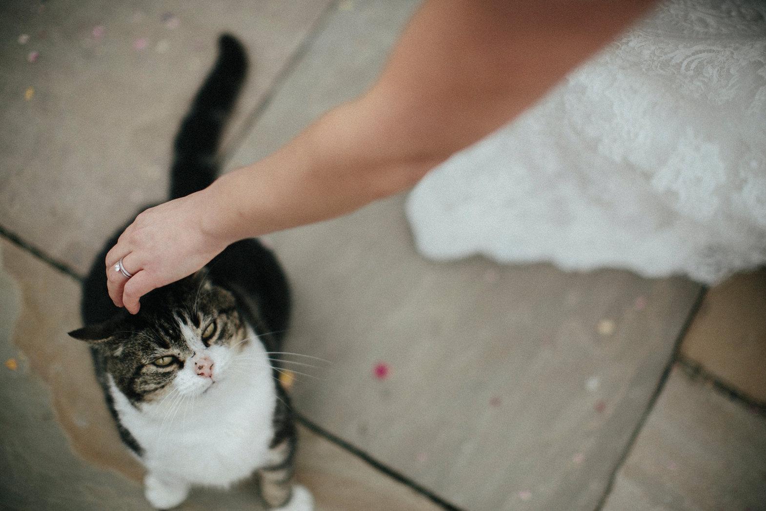 WEDDING PHOTOGRAPHy AT LOWER BARN (84).jpg
