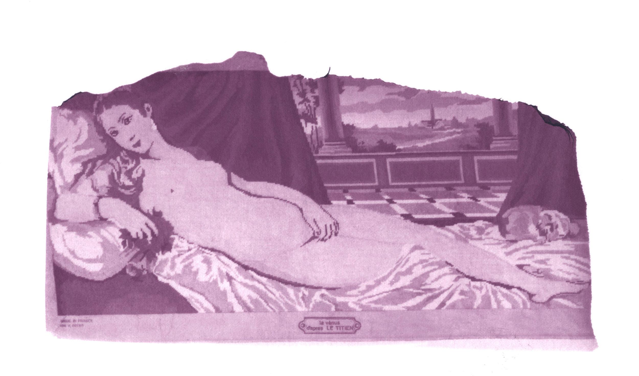 Vénus copie.jpg