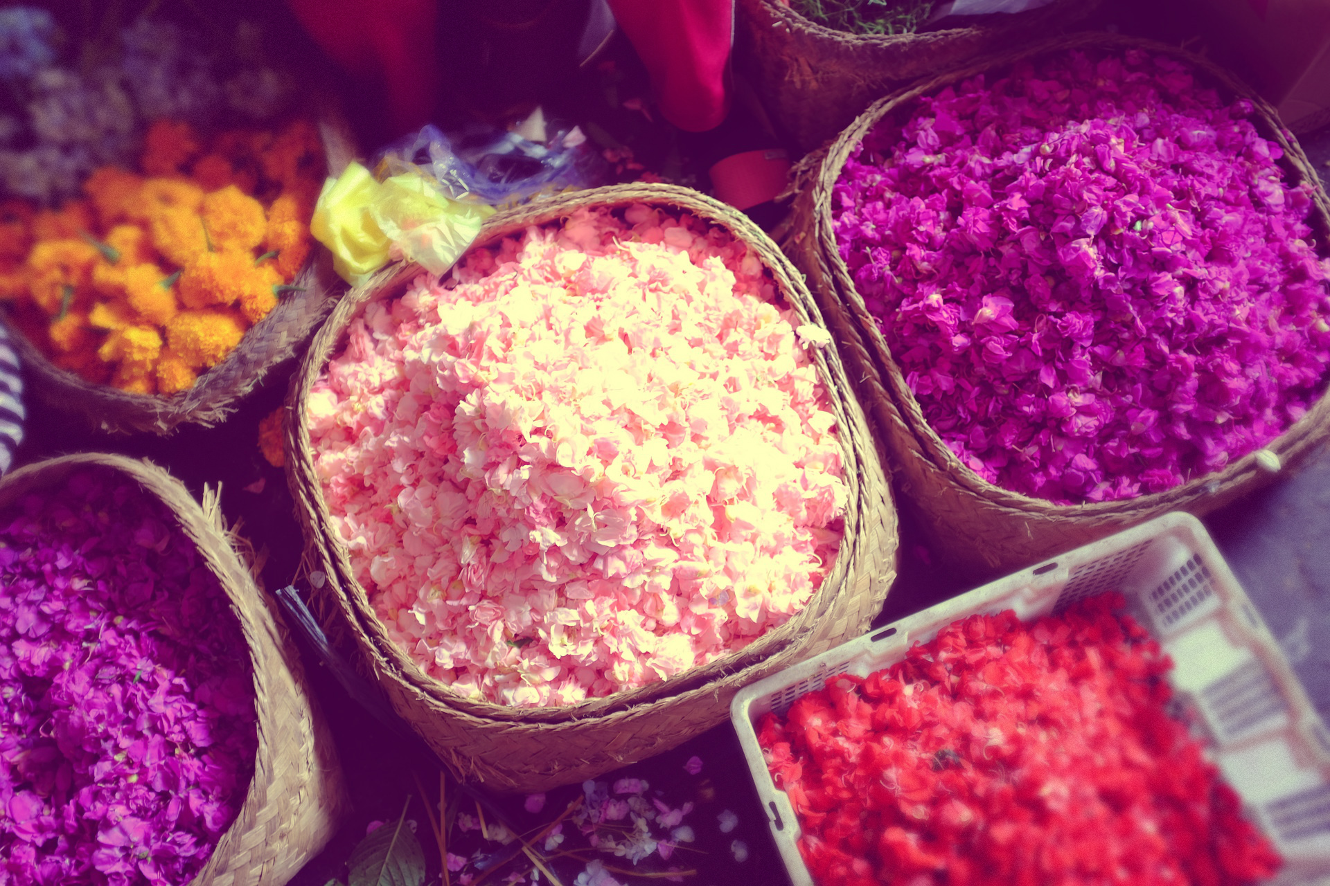 Bali Sacred Immersion 10.jpg