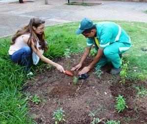 Eliane Soares adotou um canteiro em BH para fazer um jardim de rosas.