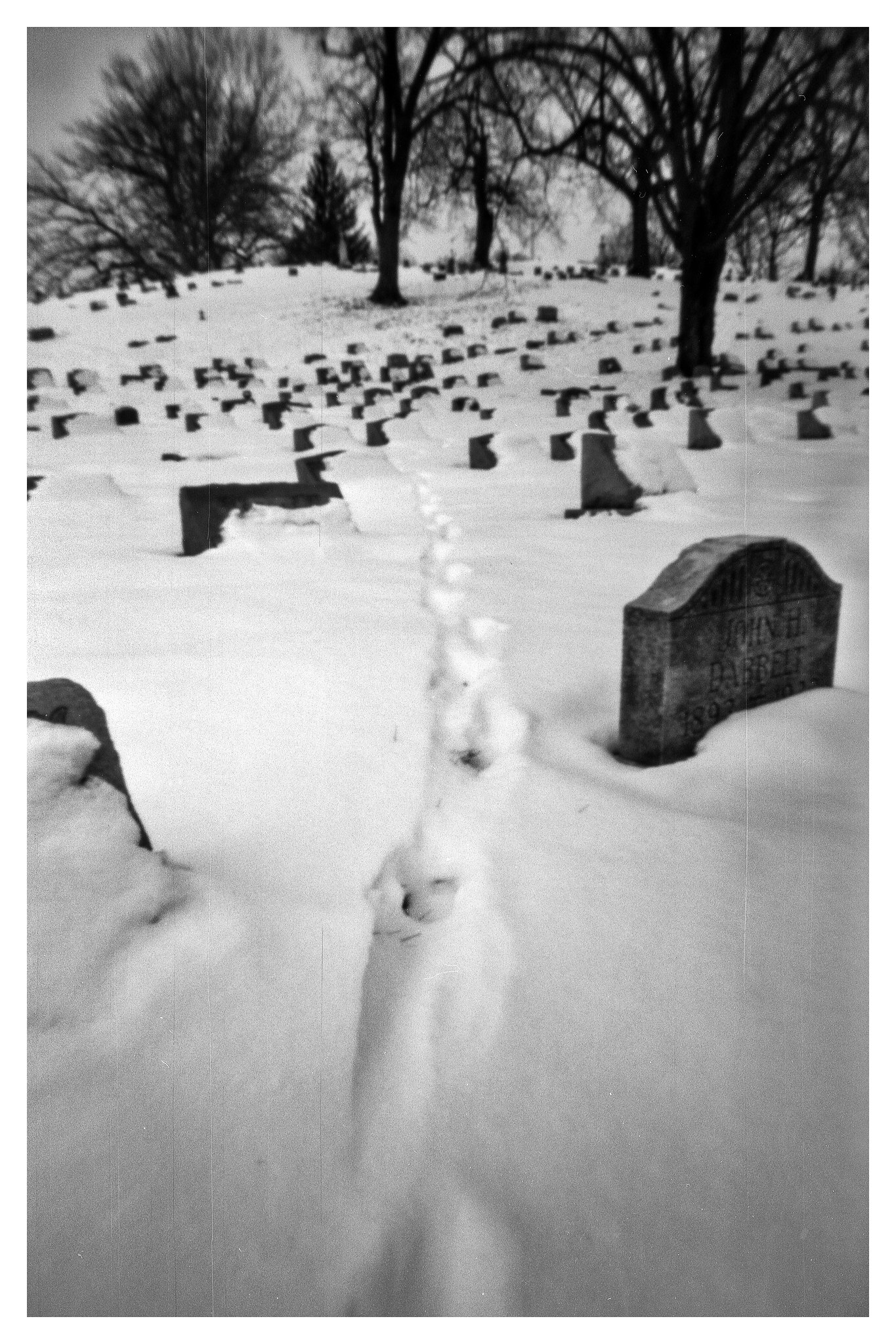 Calvaray Cemetery - NOON 612 Pinhole Camera on Fuji ACROS 100 film
